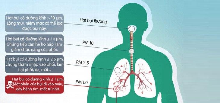 Tác hại của bụi mịn pm2.5 như thế nào?