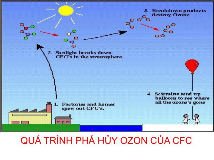 CFC tác hại rất lớn đến môi trường